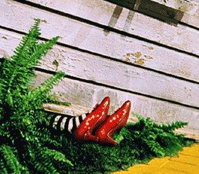 Thou Shalt Not Suffer A Witch to Wear Stripey Socks